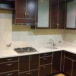 Raudonmedzio virtuve su stiklu (1)