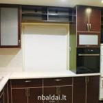 Raudonmedzio virtuve su stiklu (2)